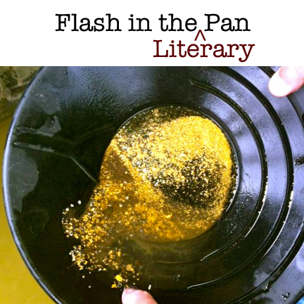 Flash Literary Pan